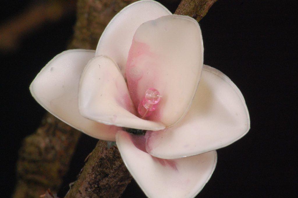 Blüte aus Latex
